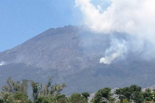 Titik api kembali muncul di hutan Gunung Sumbing