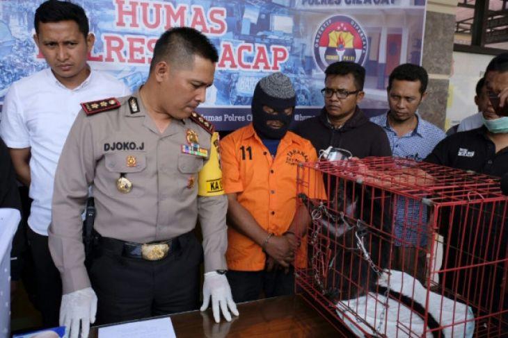 Pedagang lutung dan kukang ditangkap di Cilacap