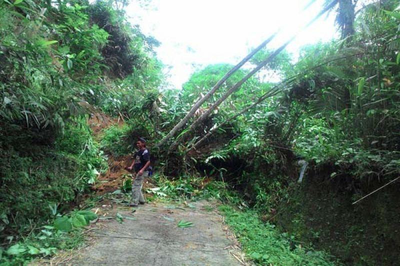 Landslide Damages 13 Homes in Banyumas