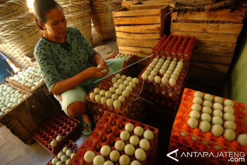 Lebaran, penjualan telur asin Brebes capai 20.000/hari