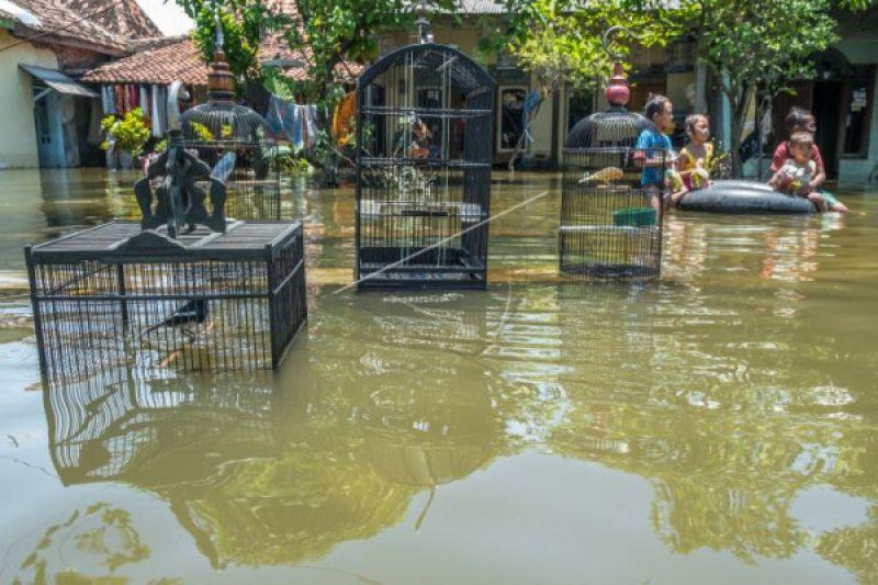 Pemerintah didesak serius tuntaskan penanganan banjir