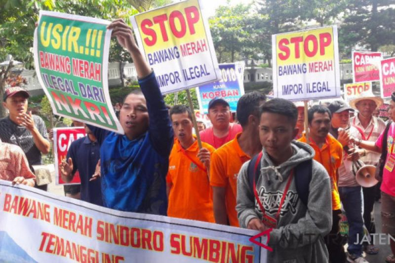 Bawang merah impor masuk, petani Temanggung demo