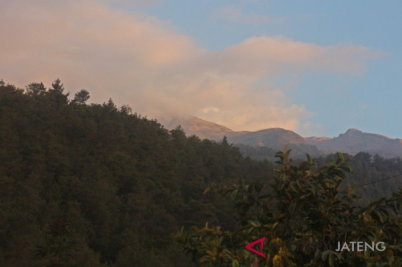 Kebakaran di lereng Merbabu hanguskan lahan 400 hektare