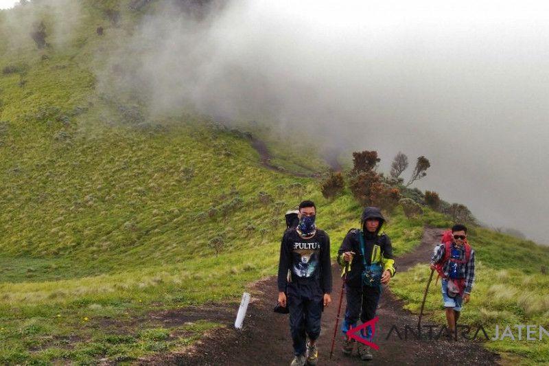 Kembali dibuka, jumlah pendaki ke Merbabu Boyolali meningkat