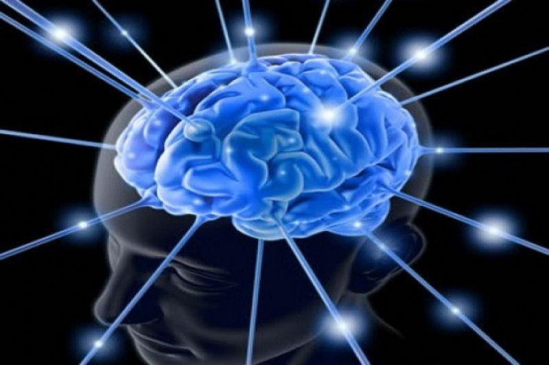 Mungkinkah otak manusia diretas?