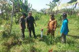 Legislator sidak lokasi penambangan pasir Kecamatan Galur
