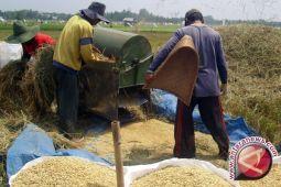 Petani diharapkan terapkan budi daya ramah lingkungan