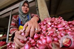Pemkab Bantul : penurunan harga bawang merah aman