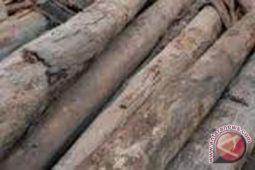 Bahan industri kayu Bantul mayoritas dari luar