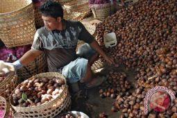 Salak Sleman tambah ekspor buah unggulan Indonesia