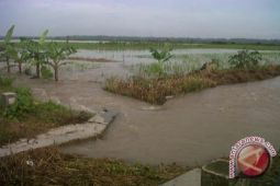 14 titik aliran sungai di Kulon Progo rawan banjir