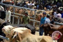 Pemkab Bantul meresmikan empat pasar rakyat