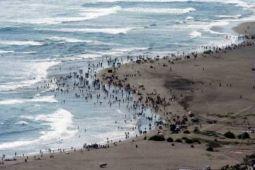 Puluhan ribu wisatawan padati wisata Gunung Kidul