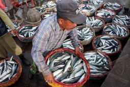 KKP : badai siklon pengaruhi tangkapan ikan nelayan