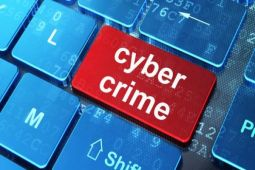Situs torrent jadi sarana aksi pelaku kejahatan siber