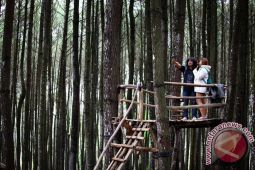Pemkab : pariwisata sektor pendongkrak perekonomian paling strategis