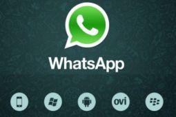 Cara membuat sticker pribadi untuk Whatsapp