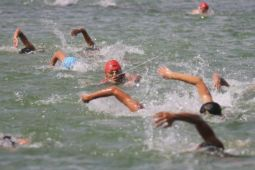 Triathlon - Jepang rajai dua nomor ASCT 2017