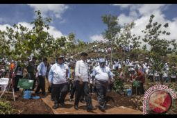 Ribuan warga DIY padati lokasi penanaman pohon