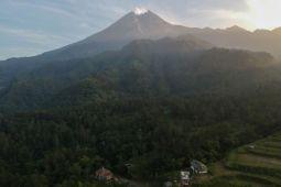 Tertutup kabut hembusan Gunung Merapi tidak teramati