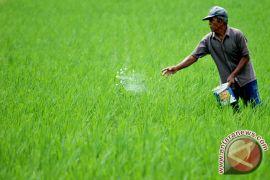 Bantul petakan 217.000 bidang lahan pertanian berkelanjutan