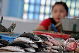 Kebutuhan ikan di Depok naik 100 persen
