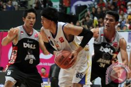 Juara NBL Indonesia