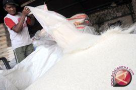 Stok beras di Bantul mencukupi