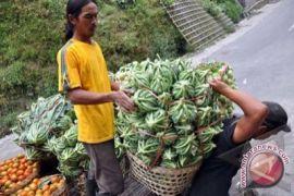 Indonesia dorong akses komoditas pertanian-farmasi ke Ukraina