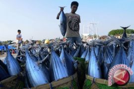 KKP berkomitmen menumbuhkan kewirausahaan sektor kelautan-perikanan
