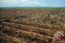 BRG-Kemtan menyiapkan 1.000 hektare sawah PLTB