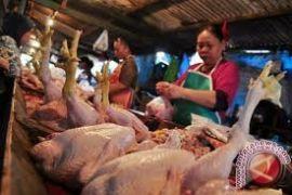 Harga daging ayam di Bantul naik