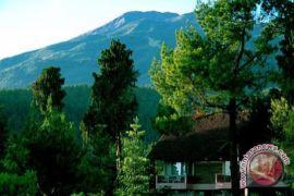 Tiga 'homestay'Bantul maju tingkat nasional