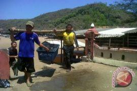 DKP didorong optimalkan tangkapan ikan nelayan