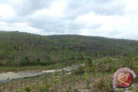 BPBD: tanah ambles Krambilsawit fenomena tanah karts