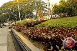 Yogyakarta tambah Rp87 miliar untuk pengadaan lahan terbuka hijau