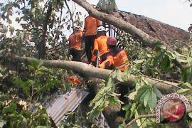 163 rumah rusak akibat puting beliung