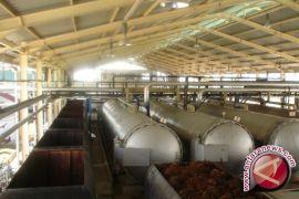 Indonesia meminta Uni Eropa tidak diskriminasi minyak sawit