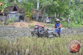 Petani muda Kulon Progo diberi pelatihan untuk wujudkan swadaya pangan