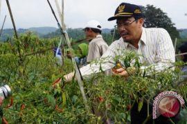 Mentan harapkan PF2N dorong masyarakat produksi hortikultura