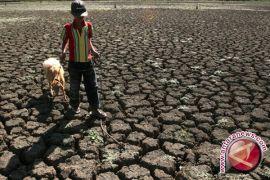 Warga Ponjong berupaya pertahankan desa tahan pangan