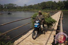 Gunung Kidul bangun rumah pompa untuk menampung rumput hijau