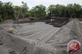 LIPI meluncurkan Pusat Data Nasional Ekosistem Pesisir
