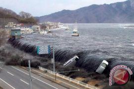 BPBD pastikan sistem peringatan dini Tsunami berfungsi