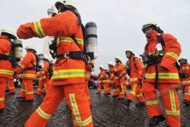 Dinas Kebakaran dibanjiri permintaan evakuasi sarang tawon