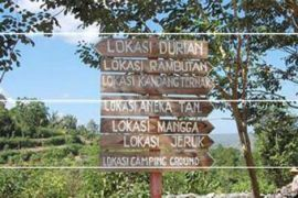 Penarikan retribusi wisata pantai tanpa kendala