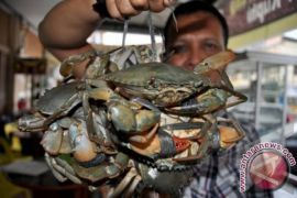 Bantul menggencarkan sosialisasi aturan penangkapan kepiting gara-gara nelayan ditangkap polisi