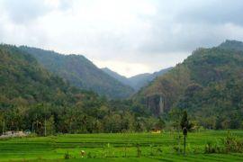 Pembangunan jalan wisata religi Sendangsono belum dilanjutkan