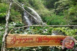 Ratusan wisatawan mulai kunjungi Kebun Teh Nglinggo