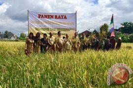 Kulon Progo didesak tetapkan lahan pertanian berkelanjutan